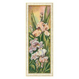 Розовый ирис (26х79 см) — картина в багете